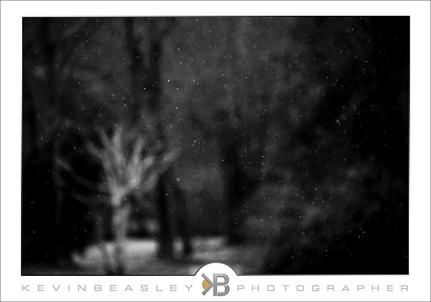 snow_2884