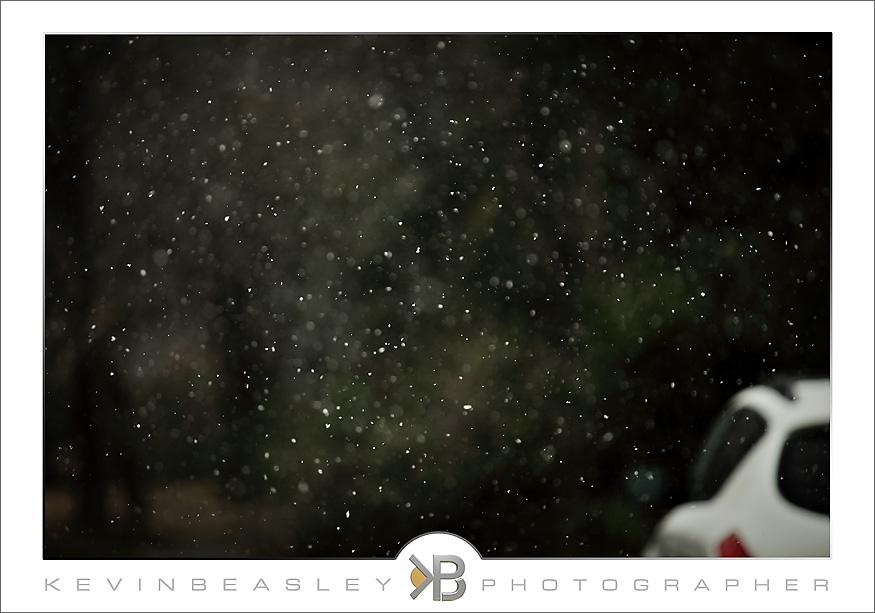 snow_2903-rt